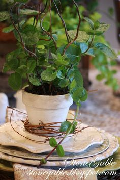 Love these herb pot/grape vine/will branch place settings... simple... classy!