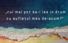 """cui mai pot sa-i ies in drum cu sufletul meu de-acum? Romanian People, Toxic People, True Words, Word Art, Background Images, Favorite Quotes, Literature, Poetry, Tudor"