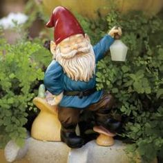 P91086 Gned - Solar Lantern Gnome