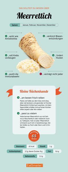 Das solltest du über Meerrettich wissen | eatsmarter.de #meerrettich #ernährung #infografik