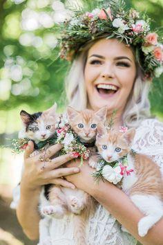Kitten Bridal Shoot Holding All Three Kittens Laughing Rustic Wedding Photography, Barn Wedding Photos, Cat Photography, Wedding Pictures, Bridal Session, Bridal Shoot, Cat Wedding, 1920s Wedding, Wedding Ideas