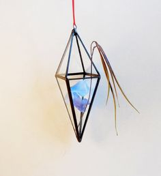 READY TO SHIP. Small Hanging Terrarium,Measures about 8 H x 2,5 W. | $35.00