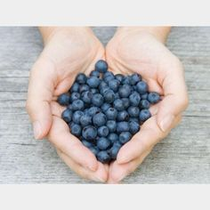 P O W E R F O O D  Blueberries are one the most nutrient dense berries packed with free radical fighting antioxidants excellent for brain health and heart health and low on the glycemic index. Try our Rainforest Acai Smoothie made with blueberries acai and pre-hydrated chia seeds!  #brainfood #antioxidants #blueberries #superfood #radiantskin #beautyfood #beautydetox #fruit #organic #plantbased #nutrition by glowbio