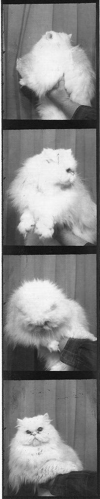 Vintage photobooth http://fotoautomat.fr