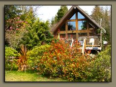 15 Best Tofino Cabins Rentals Images Cabin Rentals Cabins Cottages