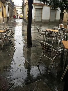 Jerez in the Rain When It Rains, Cadiz, Andalucia
