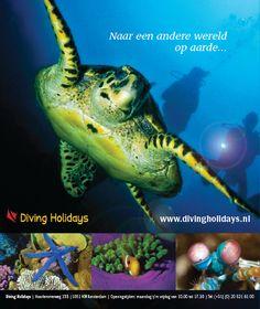Advertentie voor Diving Holidays