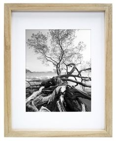 MCS Art 16 by 20-Inch Shadow Box Frame with 11 by 14-Inch Mat Opening, Natural MCS,http://www.amazon.com/dp/B00HR1ZNF2/ref=cm_sw_r_pi_dp_AWFotb0BY5DW8BR5