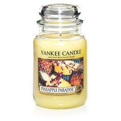 Large Jar Candles | Yankee Candle Pineapple Paradise