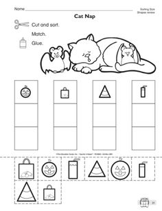 sorting by size worksheet free printable worksheets pinterest sorting worksheets and. Black Bedroom Furniture Sets. Home Design Ideas