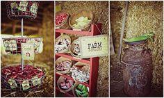 Farm theme birthday party.