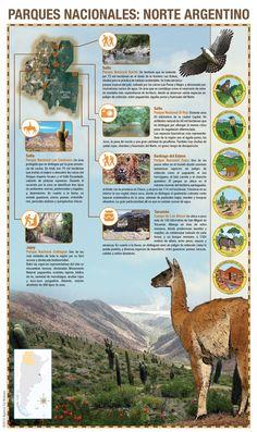 Infografía: Parques Nacionales norte argentino