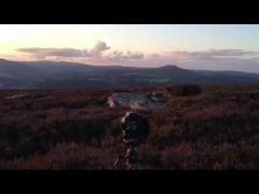 Brecon Beacons Landscape Photography Diary...4th August Wine `O` clock - YouTube