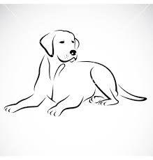 labrador draw - Pesquisa Google