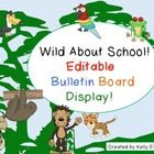 It's back to school time! This rainforest themed bulletin board display is a great way to welcome your students back to school!     The best part is ...