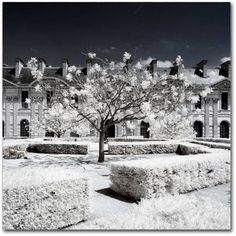 Trademark Fine Art Another Look at Paris XX Canvas Art by Philippe Hugonnard, Size: 18 x 18, White