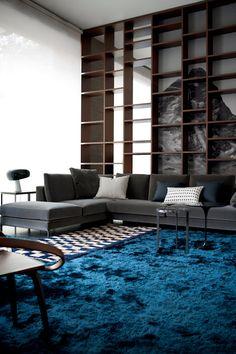 ♂ Contemporary interior design living room space with indigo carpeting