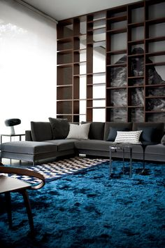 ♂ Contemporary interior design living room space with indigo carpeting
