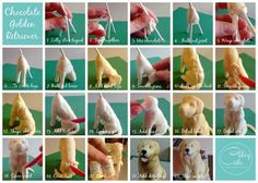 A basic guide to structuring and sculpting a golden retriever.