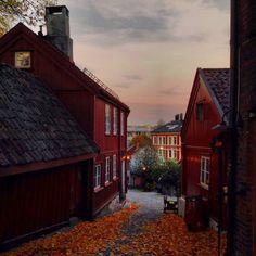 Autumn - Oslo, Norway