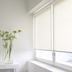 White Blinds For Windows cellular shades (disappear neatly when they are open, allowing for