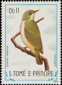 Stamps showing Principe White-eye Zosterops ficedulinus, with distribution map showing range Island Nations, White Eyes, Natural Park, African Animals, Vintage Travel Posters, Tropical Paradise, Archipelago, Capital City, Postage Stamps