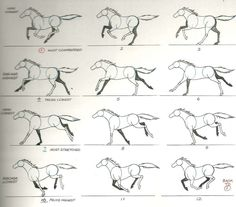 horse run cycle - Google Search