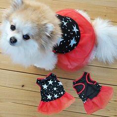 Puppy Cat Princess Clothes Apparel http://pupskii.com/products/puppy-cat-princess-clothes-apparel?utm_campaign=crowdfire&utm_content=crowdfire&utm_medium=social&utm_source=pinterest