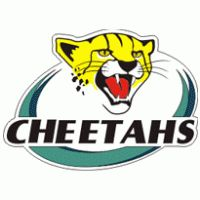 Cheetashs (Bloemfontein - South Africa) Sports Logos, Sports Clubs, Baseball Pennants, Rugby Sport, Team Mascots, Great Logos, Cheetahs, American Flag, Team Logo