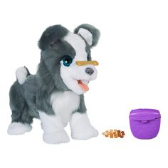 Fur Real Friends Ricky, the Trick Lovin Interactive Plush Pet Toy, Sound and Motion Combinations, Ages 4 and Up Toys For Girls, Kids Toys, Chien Shih Tzu, Little Live Pets, Hobby Supplies, Interactive Toys, Pembroke Welsh Corgi, Real Friends, Christmas Toys