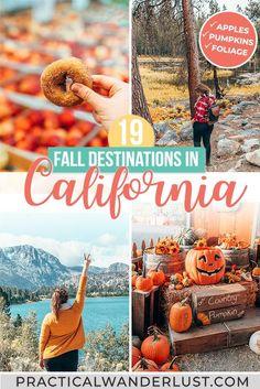 California Travel Guide, California Destinations, Usa Travel Guide, Travel Usa, Travel Guides, Travel Destinations, Travel Tips, Winter Travel, Summer Travel