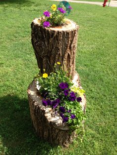 What to do with the tree stump? So many beautiful ideas . This was mine , Can't  wait until it grows more.... I love it ...