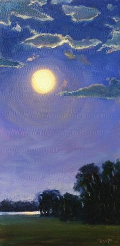 Moonlit Night - full moon, clouds, nocturne, night, evening, dusk, trees,  -- Takeyce Walter
