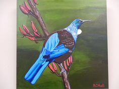 Tui - Acrylic painting on board by New Zealand Artist - Robyn Hall - Original Sold - prints available Nz Art, Flora And Fauna, Painting & Drawing, New Zealand, Christmas Crafts, Wildlife, Birds, Drawings, Albums