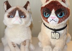Grumpy Cat plushesTwo official Grumpy Cat plushes previewed photo