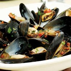 Mussels South of Two Borders  | KitchenDaily.com