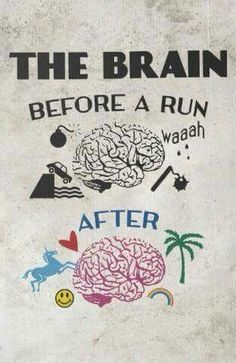 Brain before and after the run.