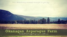 Discover amazing things and connect with passionate people. Asparagus Farm, Asparagus Recipe, Passionate People, Shop Local, Layout, Magazine, In This Moment, Create, Google