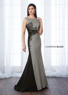 Cameron Blake 217651 Sleeveless crepe and lace fit and flare gown with bateau neckline, v-back, lace trims color block through natural waist and down right side of gown, sweep train. Cameron Blake, Evening Dresses, Prom Dresses, Column Dress, Pageant Gowns, Bride Gowns, Necklines For Dresses, Groom Dress, Formal Gowns