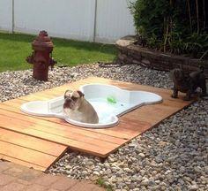 Got my pool and my  favorite pee pee spot... Im set!!