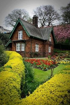 Brick house with hedging