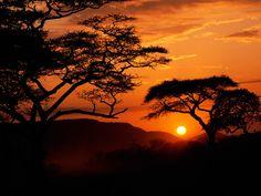 Terra/Natureza Sunset  Papel de Parede