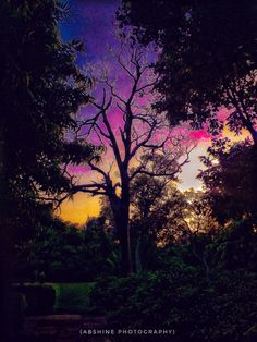 IMAGE SHOT OF COLOURFUL SKY AT PICNIC HUT PARK , DELHI  Facebook:- https://www.facebook.com/Abshinephotography/  #abshine shot this image of a colourful sky at picnic hut park ,delhi. Please share your comments and feedback  EXIF Details :- Mobile photography Aperture - f/5.6 ISO-100  Shutter Speed - 1/60 sec  #abshinephotography #picnic #park #delhi #colourful #sky #mobile #photography #picoftheday #pic #abshinelove #natural #natur #india #2016 #hot #recent4recent #tourandtravel #walking…