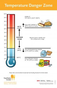 Illustrative image of the Temperature Danger Zone.