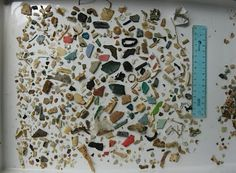 """From the stomach of a sea turtle: Pictured above are the stomach contents of a juvenile sea turtle accidentally captured off the coast of Argentina. """"Relief of gastrointestinal obstruction of a green turtle off Melbourne beach, Florida, resulted in the animal defecating 74 foreign objects over a period of a month, including four types of latex balloons, different types of hard plastic, a piece of carpet-like material, and two 2- to 4-mm tar balls''"""