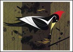 Ivory-Billed Woodpecker - Ford Times Silkscreen Print