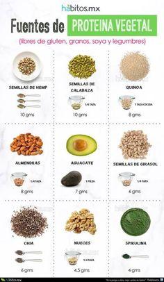 Fuentes de Proteína Vegetal LIBRE DE GLUTEN, DE GRANOS, DE SOYA Y DE LEGUMBRES…
