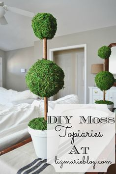 Easy DIY Moss Topiaries - Made from moss/moss ribbon, a painted terra cotta pot, some styrofoam balls, and a wooden dowel! Diy Garden Decor, Diy Home Decor, Styrofoam Ball, Diy Tv, French Decor, Summer Crafts, My Living Room, Dollar Stores, A Table