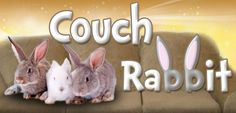 This experience is further enhanced by the ability to make new friendships, experience new cultures, and create meaningful connections. Couchrabbit provides a portal of communication between a verified guest that has a need for accommodations and a verified host that can provide those accommodations. Our platform 's emphasis is on rapid response communication between both hosts and guests. Unlike other couch oriented websites, Couchrabbit encourages it's subscribers to exchange…