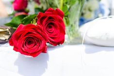 Good Morning Roses, Morning Flowers, Good Morning Images, Beautiful Morning, Happy Friendship Day Messages, 800 Flowers, Flora Flowers, Order Flowers, Beautiful Red Roses
